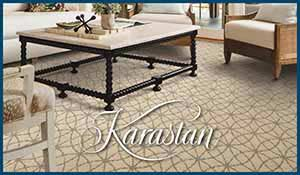 Featuring the newest carpet styles by Karastan